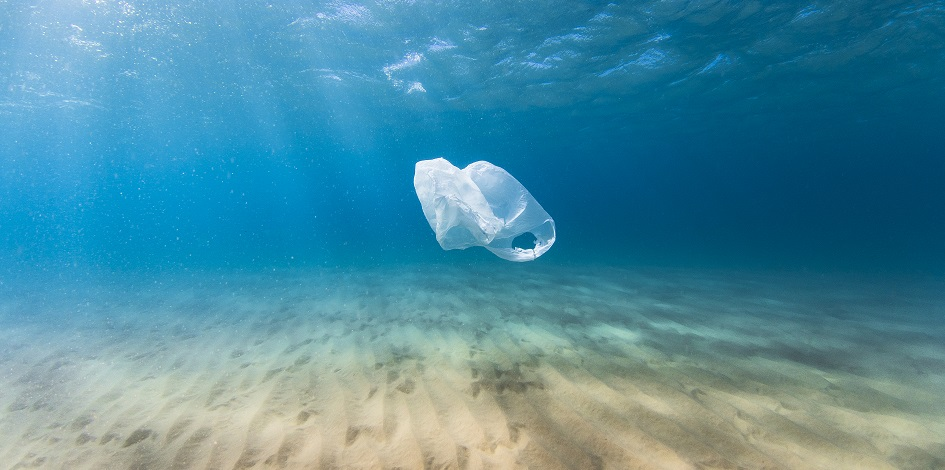 Plastic phase-out: which companies will be most affected?