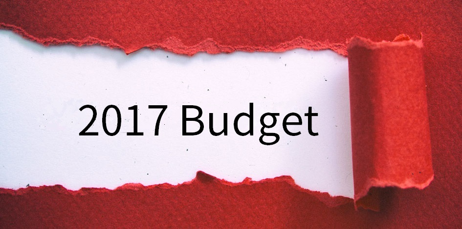 Budget 2017: at a glance